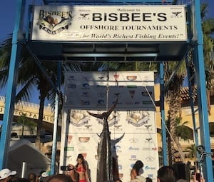 fish weigh-in at bisbee's tournament