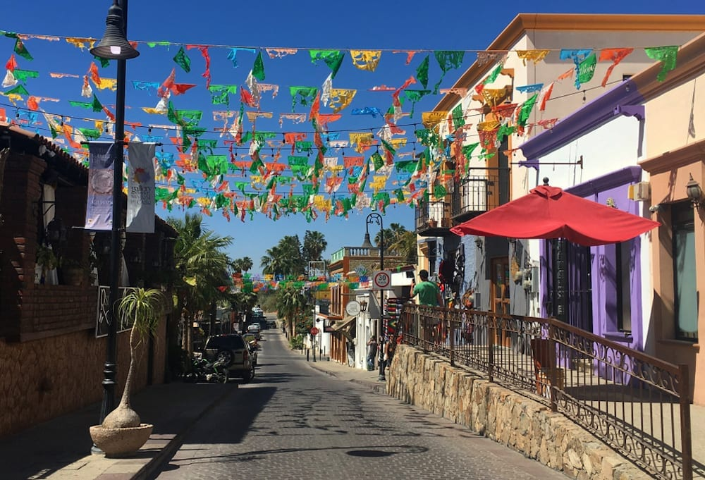 Everything You Need to Know About the Art Walk in San José del Cabo