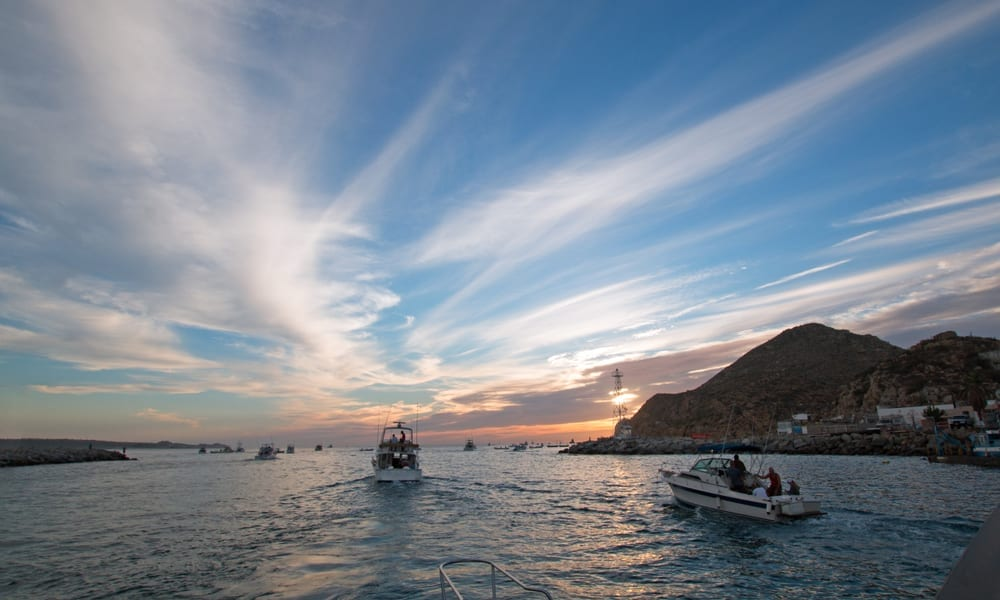 Your Guide to Fishing in Cabo San Lucas